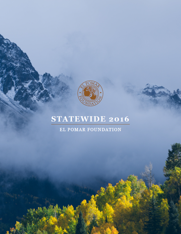 Statewide Binder 2016 3D Issue Cover.PNG